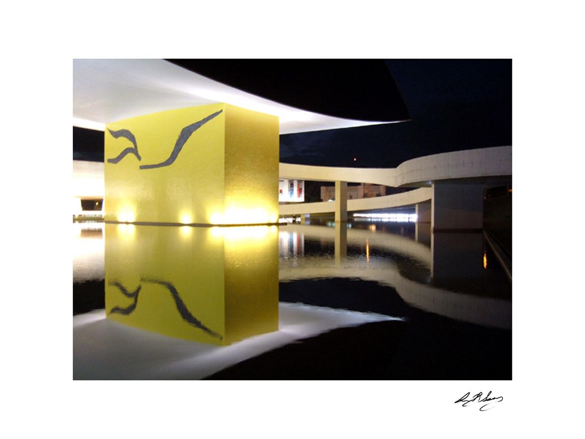 anita-soares-niemeyer-13
