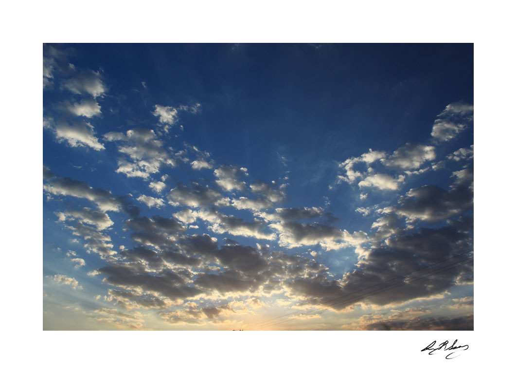 anita-soares-niemeyer-15
