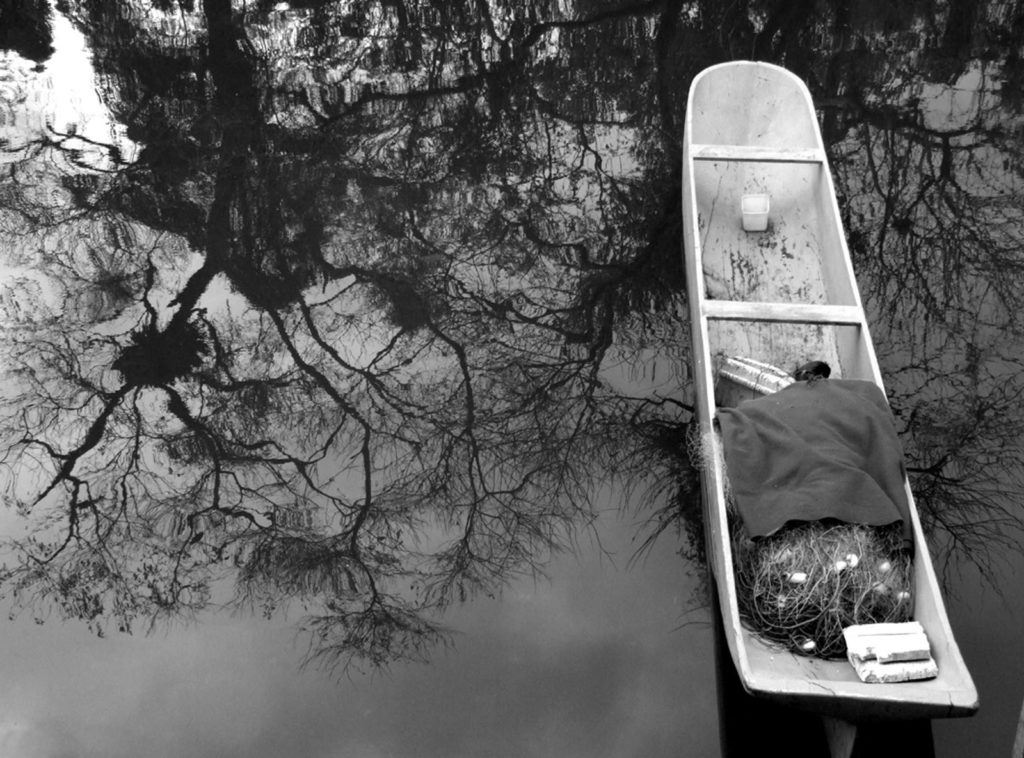 Canoas de Paraty